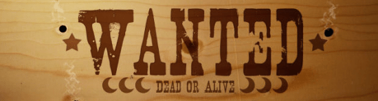 seo-dead-or-live