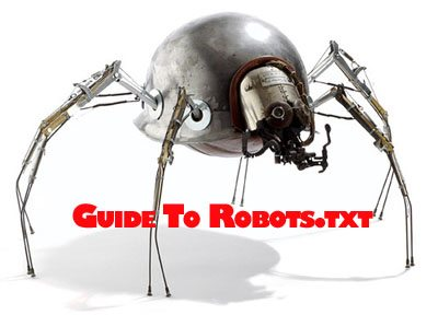 Robots.txt Guide for Popular CMS and Shopping Carts